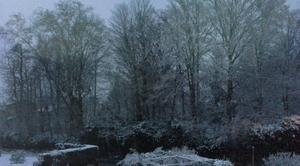 Neige Neuville-les-Dames 01400 Neuville_les_dames  matin de neige