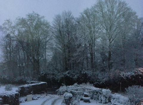 Neuville_les_dames  matin de neige