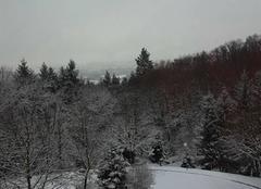 Neige Limonest 69760 Photo de neige