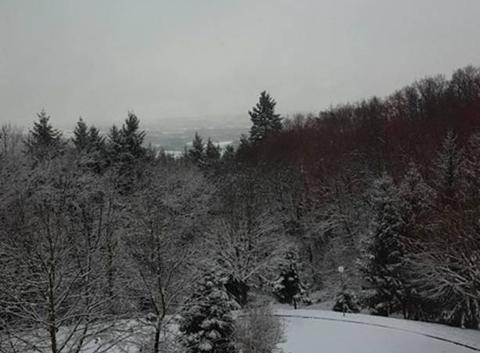 Photo de neige