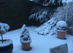 Neige Dardilly 69570 La neige au réveil