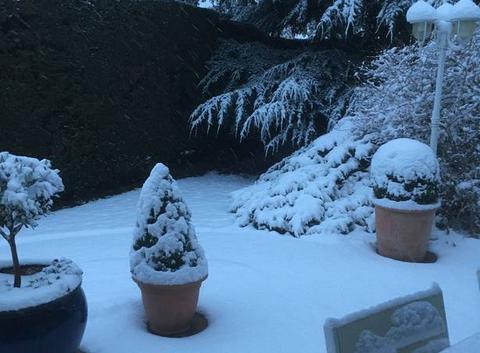 La neige au réveil