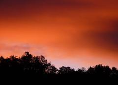 Ciel Saint-Romain-en-Viennois 84110 Le ver de soleil
