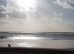 Ciel Les Sables-d'Olonne 85100 Mer et soleil