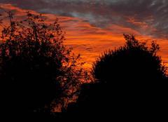 Ciel Puits-et-Nuisement 10140 Levé de soleil
