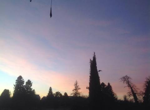Joli lever du soleil