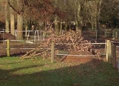 Tempête Favieres 77220 Encore des branches cassées !