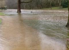 Pluie Tulle 19000 Que d'eau