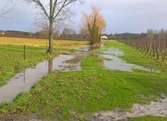 Pluie Saint-Ciers-sur-Gironde 33820 Pluie
