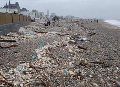 Tempête Le Havre 76600 Les dégâts de la tempête Eleanor