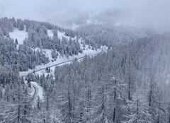 Neige Peone 06470 Route de Beuil à Valberg