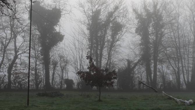 Reporters - Bonnemaison 14260 - Brouillard
