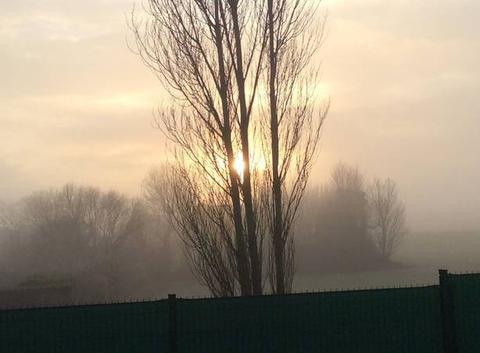 Journée brumeuse