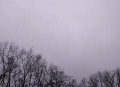 Ciel Buellas 01310 Ciel gris