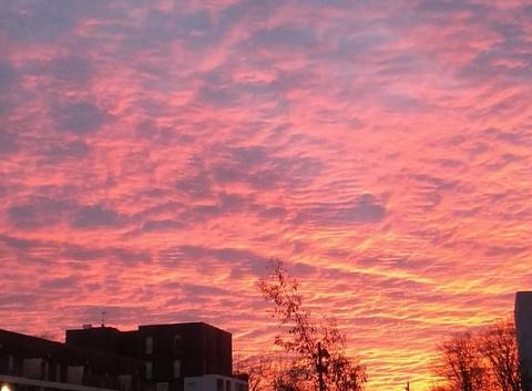 Ciel coloré ce matin .