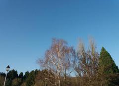 Ciel Sarrewerden 67260 Du soleil aujourd'hui.