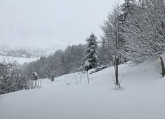 Neige Autrans 38880 Autrans sous la neige
