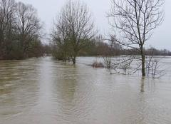 Catastrophe Selestat 67600  débordement  de l'Ill  a Sélestat (Alsace)