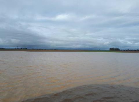 Inondation a cause des 155.6 mm de janvier