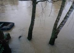 Pluie Sarrewerden 67260 La Sarre en crue.
