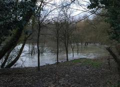 Catastrophe Brienne-la-Vieille 10500 La plage se baigne