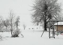 Neige La Cote-Saint-Andre 38260 Chute de neige