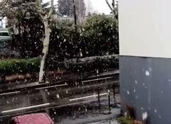 Neige Portes-les-Valence 26800 Gros flocons