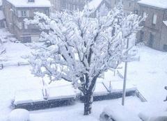 Neige Costaros 43490 Costaros sous la neige