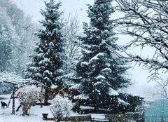 Neige Saint-Etienne-de-Crossey 38960 La neige est de retour!!