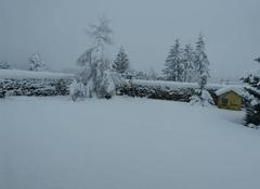 Neige Tence 43190 Abondantes chute de neige dans l'est de la Haute-Loire