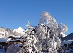 Neige Les Gets 74260 Petit matin d'hiver