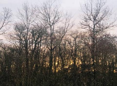 Lever de soleil ce matin