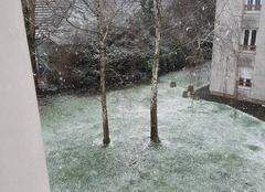 Neige Haguenau 67500 Neige à Haguenau