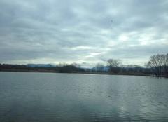 Pluie Ebersheim 67600 Inondations dans le Ried