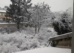Neige Pontcharra-sur-Turdine 69490 Lundi matin