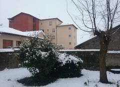 Neige Feurs 42110 Chute de neige