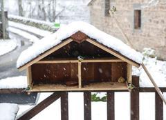 Neige Mautes 23190 Le restaurant pour oiseaux est ouvert, et il y à du monde!
