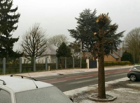 Neige sur le Nord a côté de Valenciennes