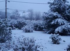 Neige Badecon-le-Pin 36200 Ce matin au réveil