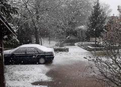 Neige Saint-Martin-de-la-Place 49160 La neige tient bien