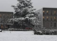 Neige Poitiers 86000 Tombe la neige.....