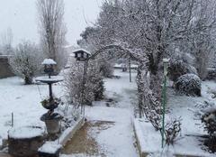 Neige Nalliers 85370 Mon jardin