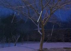 Neige Doix 85200 Sous la neige