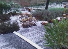 Neige Carhaix-Plouguer 29270 Faible neige