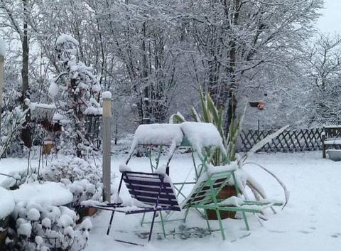 Le repos du jardin sous la neige