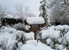 Neige Montfort-le-Gesnois 72450 L'hiver en Sarthe