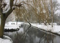 Neige Notre-Dame-d'Oe 37390 Neige sur La Perrée