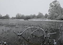 Neige Noyant-la-Plaine 49700 Neige à noyant-la-plaine