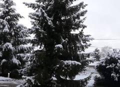 Neige Etigny 89510 L'hiver!!!