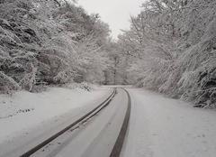 Neige Saint-Leger-Vauban 89630 Matinée hivernale